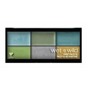 🌸5/$25 Wet N Wild foundation paint palette